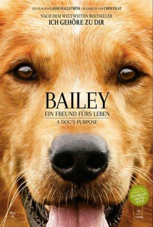 Bailey - Ein Freund…