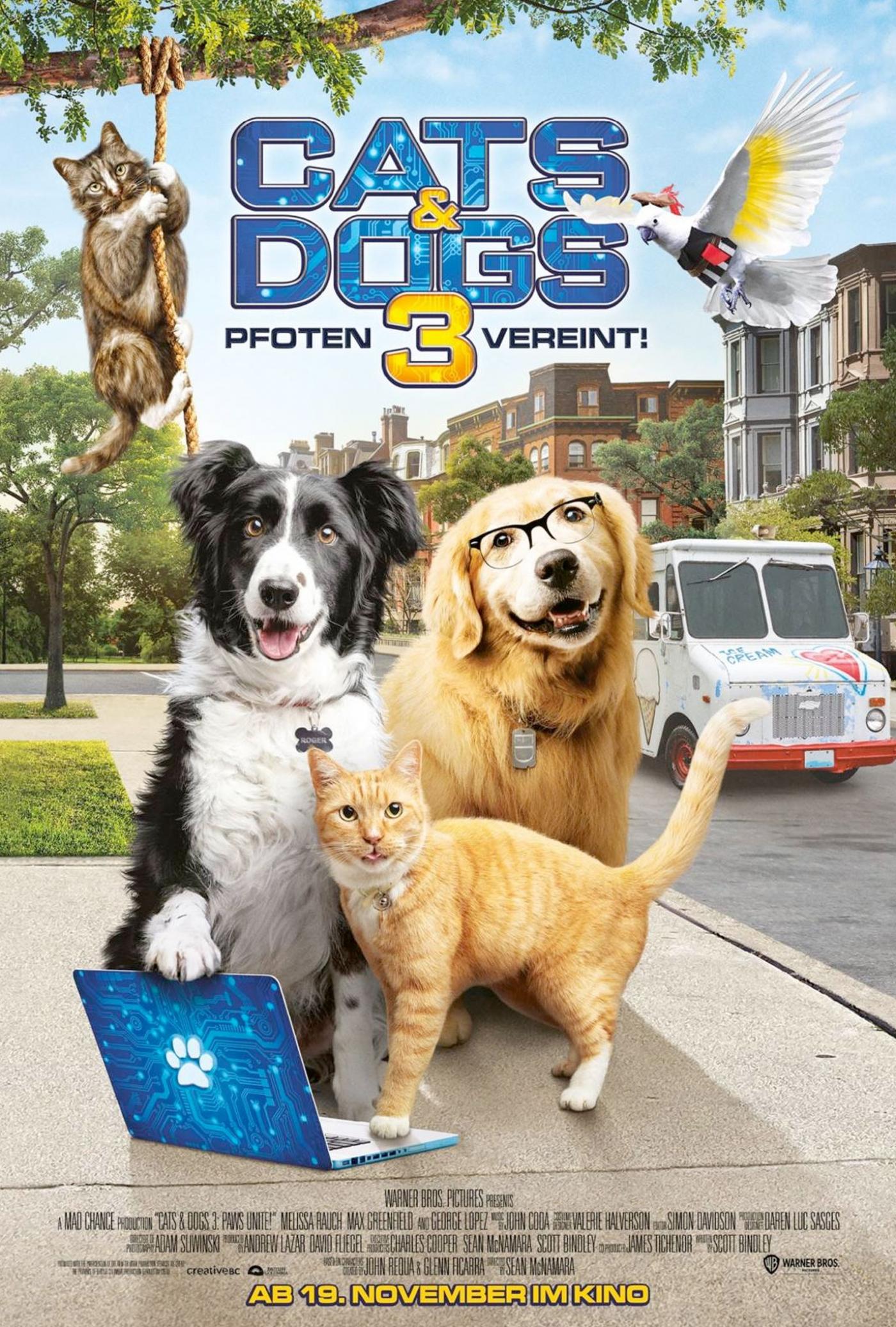 CATS & DOGS: PFOTEN VEREINT!